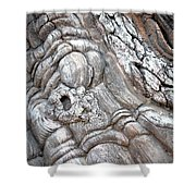 Natural Abstract 11 Shower Curtain