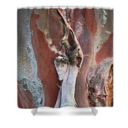 Natural Abstract 19 Shower Curtain