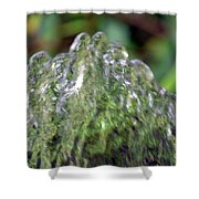 Natural Abstract 35 Shower Curtain
