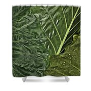 Natural Abstract 39 Shower Curtain