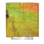 Natural Abstract 42 Shower Curtain