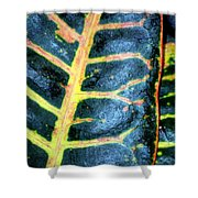 Natural Abstract 6 Shower Curtain