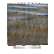 Natural Lines Shower Curtain