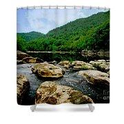 Natural Pangaea  Shower Curtain by Lj Lambert