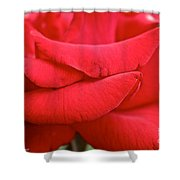 Natural Red Carpet Shower Curtain