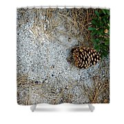 Nature Decorations Shower Curtain