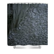 Nature Made Bubble Pack Shower Curtain