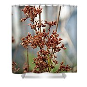 Nature Overlooked Shower Curtain