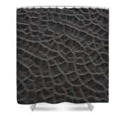 Nature Patterns Series - 64 Shower Curtain