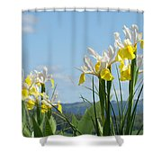 Nature Photography Irises Art Prints Shower Curtain