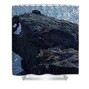 nature Protecter Santorini Island Shower Curtain