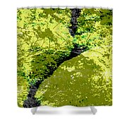 Nature Study Shower Curtain