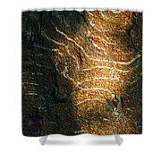 Nature's Abstractions IIi Shower Curtain