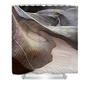 Nature's Artistry In Stone Shower Curtain by Bob Christopher