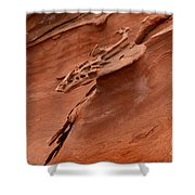 Natures Artwork Shower Curtain