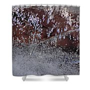 Natures Best Etching  Shower Curtain