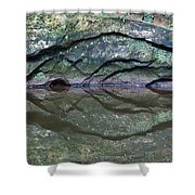 Nature's Carving Shower Curtain