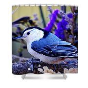 Nature's Charm... Shower Curtain