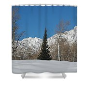 Nature's Christmas Tree Shower Curtain