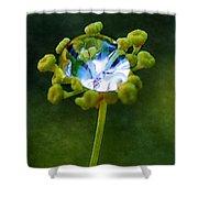 Nature's Diamond Ring Shower Curtain