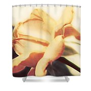 Nature's Dreams Shower Curtain