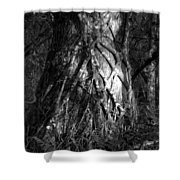Natures Grip Shower Curtain