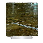 Natures Ice Cross Michigan Shower Curtain