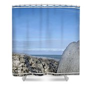 Natures Ice Sculptures 10 Shower Curtain