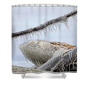 Natures Ice Sculptures 3 Shower Curtain
