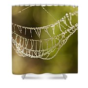 Natures Jewels Shower Curtain