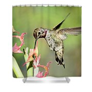Nature's Jewels  Shower Curtain