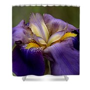 Natures Pastels Shower Curtain