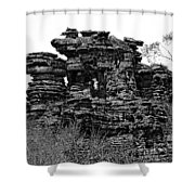 Natures' Ruins Shower Curtain