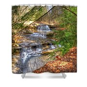 Natures Shadows And Light Shower Curtain