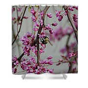 Natures View Shower Curtain