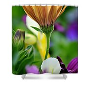 Natures Yoga Shower Curtain
