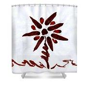 Nautical Sunburst Shower Curtain