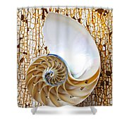 Nautilus Shell On Rusty Table Shower Curtain