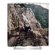 Near The Bagatski Bridge - Caucasus - Russia Shower Curtain