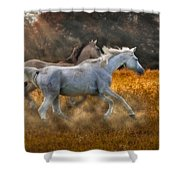 Neck And Neck Shower Curtain by Susan Candelario