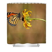 Nectar Delight Shower Curtain