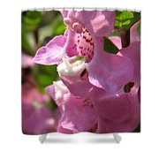 Nemesia Named Poetry Lavender Pink Shower Curtain