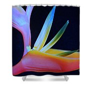 Neon Heliconia Shower Curtain