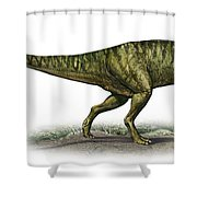 Neovenator Salerii, A Prehistoric Era Shower Curtain
