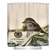Nest Egg Shower Curtain