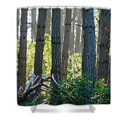 Never Interrupt A Horticultural Branch Meeting Shower Curtain