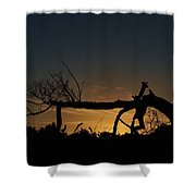 Nevergreen Tree Shower Curtain