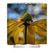 New Cone Flower Shower Curtain
