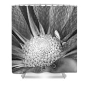 New Growth Grey Shower Curtain