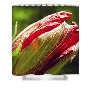New Hibiscus Shower Curtain